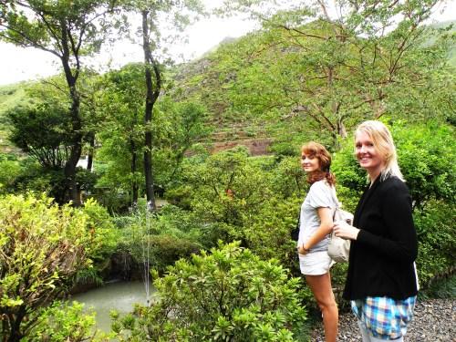 Admiring old Japanese gardens